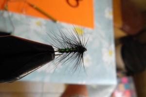 musca neagra cu hot spot