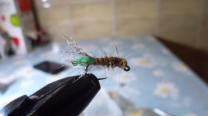 "nimfa ""peeping caddis"""