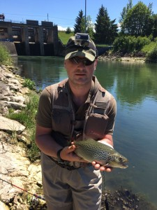 Radu big brown trout