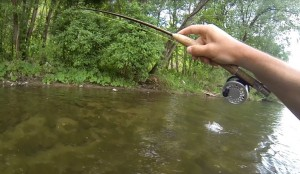 grayling vah fly fishing