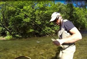 trout Stefan